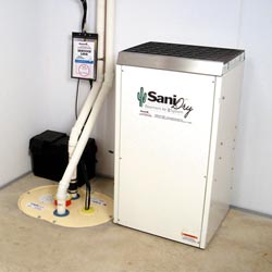 An ENERGY STAR® Rated basement dehumidifier installed in a home in Four Corners