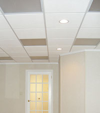 Basement Ceiling Tiles for a project we worked on in Rehoboth Beach, Delaware & Maryland